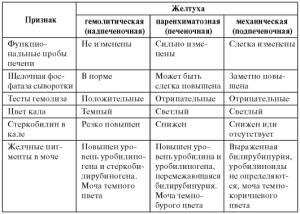 Таблица различий видов желтух