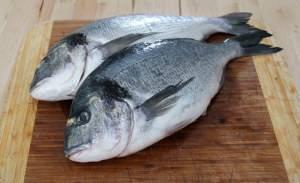 Источник заражения - рыба