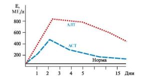Динамика показателей при гепатите