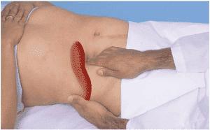 Характерные симптомы - болезненность печени при пальпации