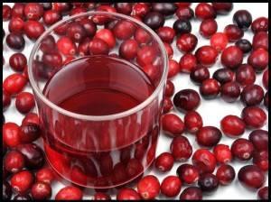 Для выведения токсических элементов  после химиотерапии желательно часто пить настой шиповника