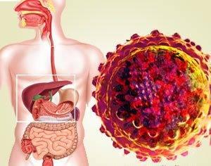 Виды вирусного гепатита